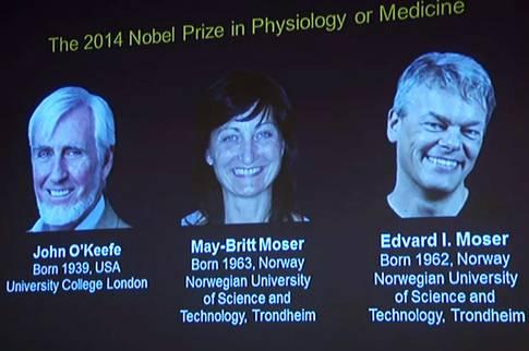 Nghiên cứu về hệ thống định vị trong não được giải Nobel Y học